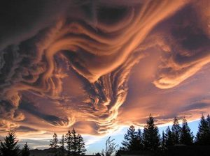Asperatus formation, Canterbury, New Zealand